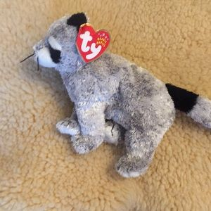 Other - Ty Raccoon